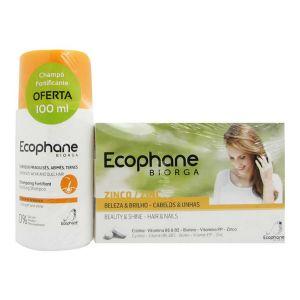 Ecophane Biorga Comprimidos Oferta Champô