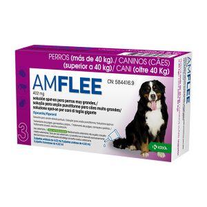 Amflee Cães Spot-On 402Mg
